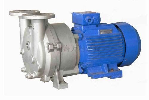 不锈钢2BV水环式真空泵